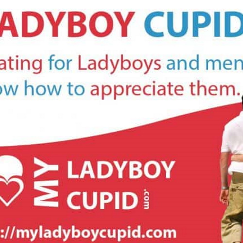 Online ladyboy dating: how to increase your luck